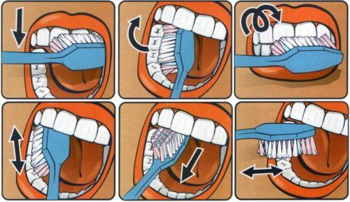 С какого возраста нужно чистить зубы ребенку: особенности ухода за полостью рта