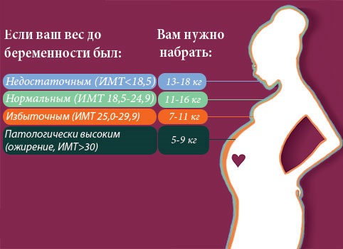 Прибавка веса во время беременности.jpg