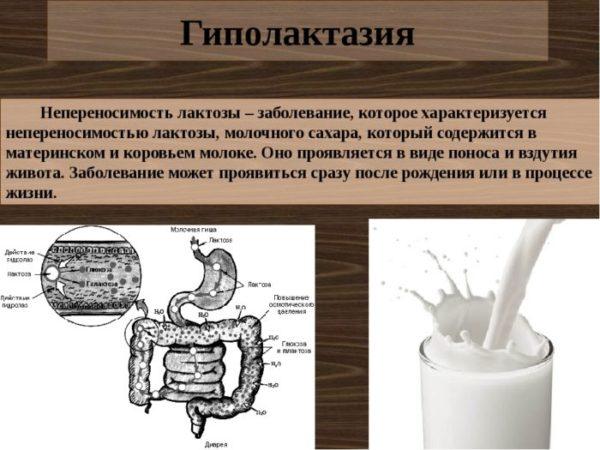 Непереносимость лактозы у грудничков.jpg