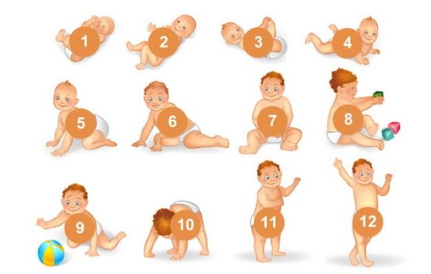 Развитие ребенка по месяцам до 1 года.jpg