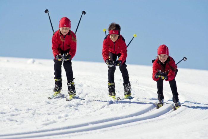 Как выбрать лыжные палки