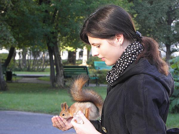 Прогулки и развлечения на свежем воздухе в Томске-01