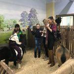 kontaktnyj-zoopark-zverinec-zoolandiya