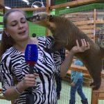 smolenskij-zoopark-i-akvarium