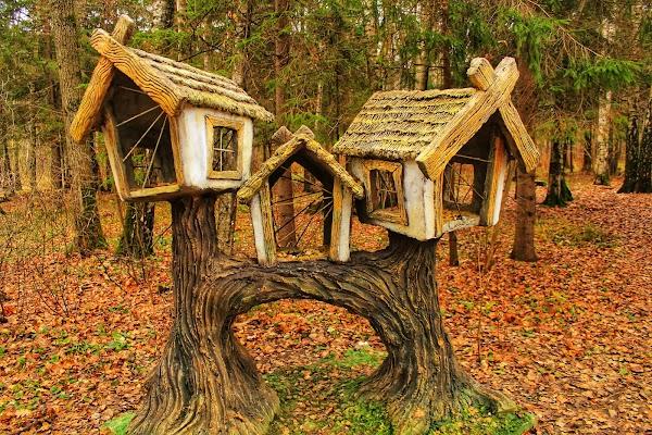 Гурьяновский лес